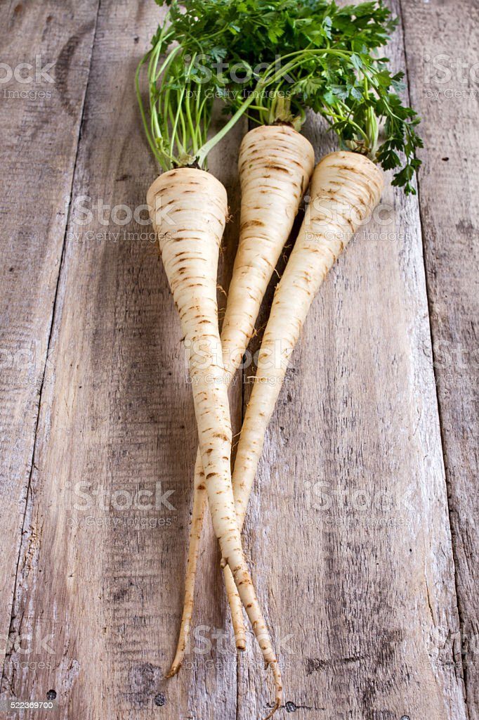 fresh parsley root stock photo