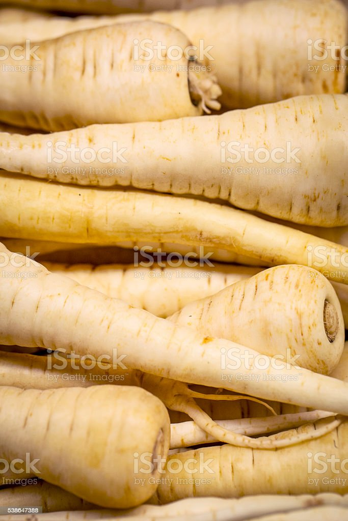 Fresh parsnip. stock photo