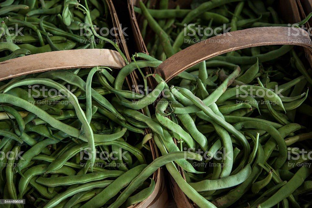 Fresh picked green beans stock photo