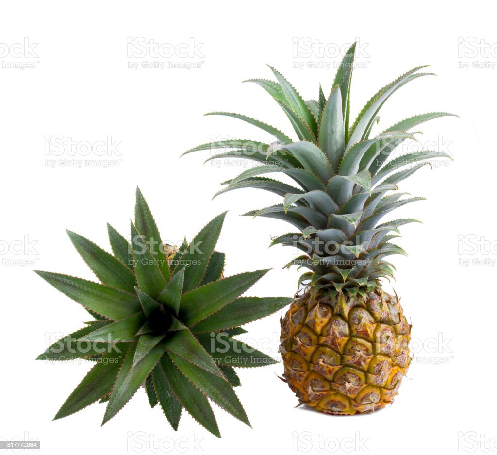 Fresh pineapple with slices isolated on white stock photo