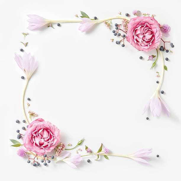 Flower Frame Pictures, Images and Stock Photos - iStock