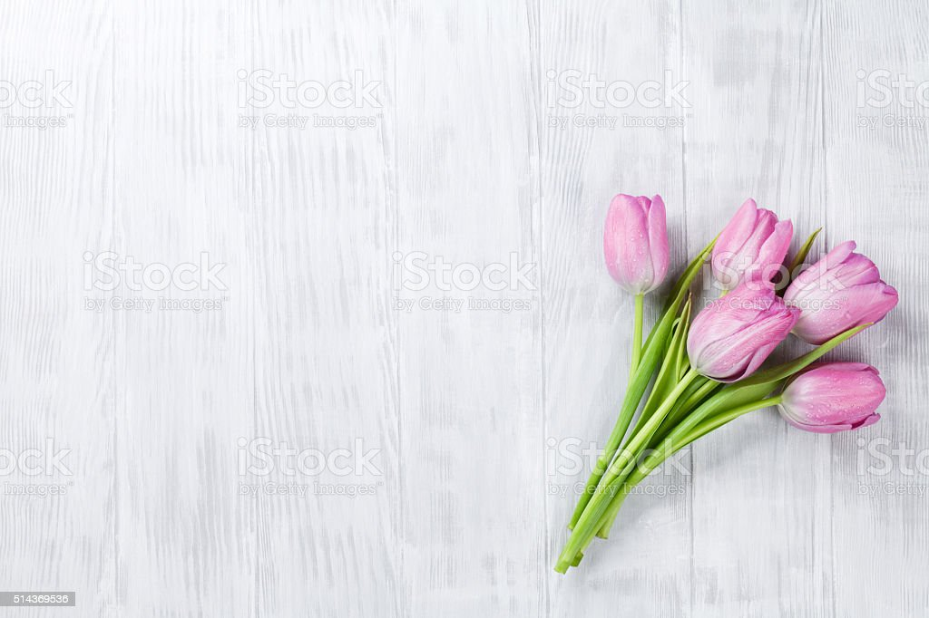 Fresh pink tulip flowers stock photo