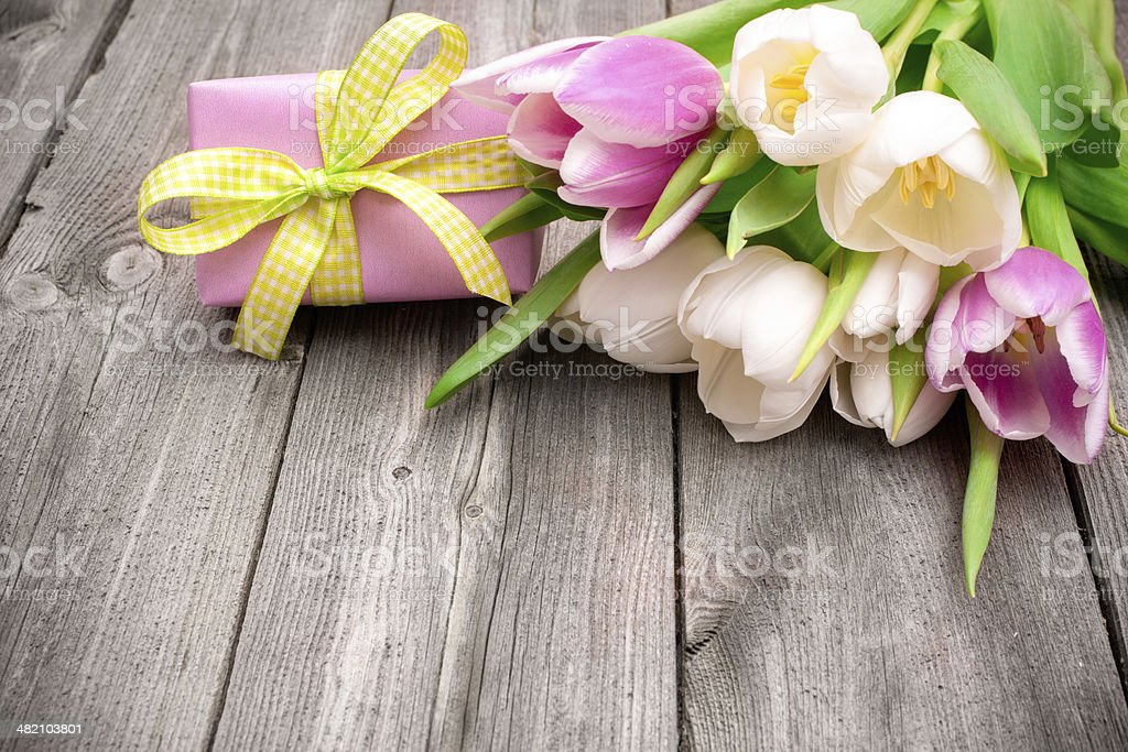 fresh pink tulips with a gift box stock photo