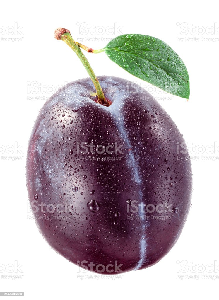 Fresh plum with drops isolated on white background. stock photo