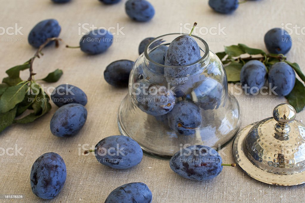 Fresh plums on the table in antique jar royalty-free stock photo