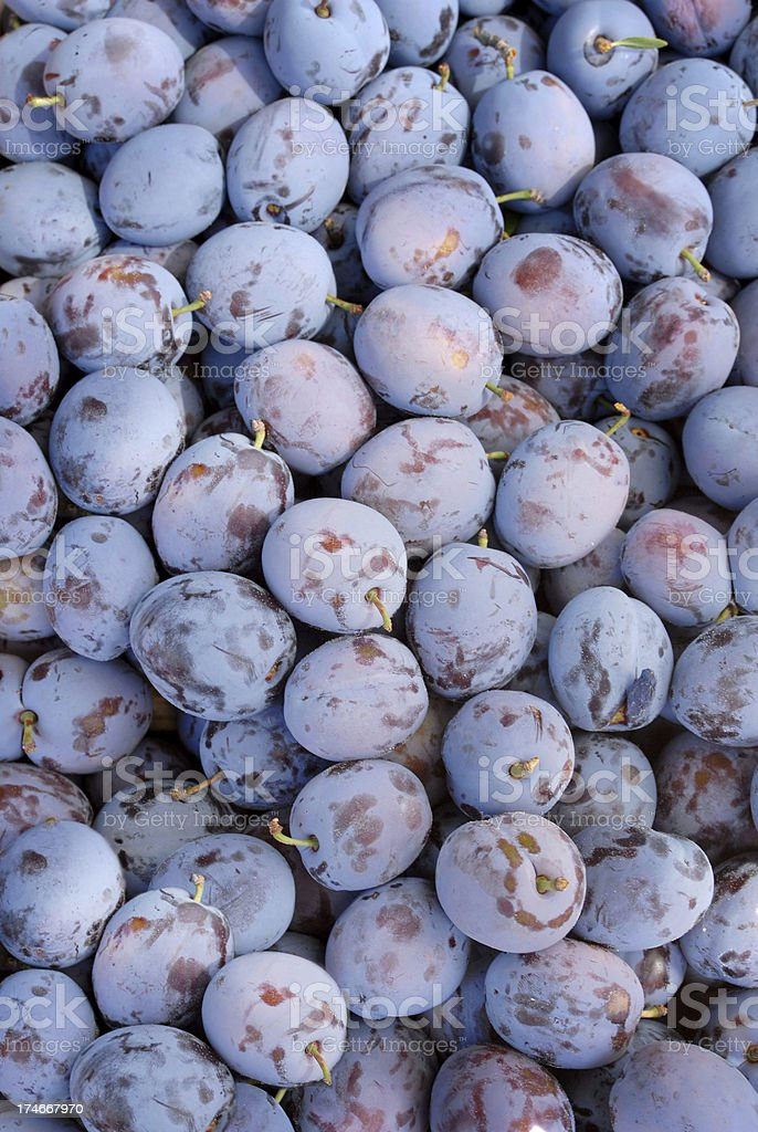 fresh plums royalty-free stock photo