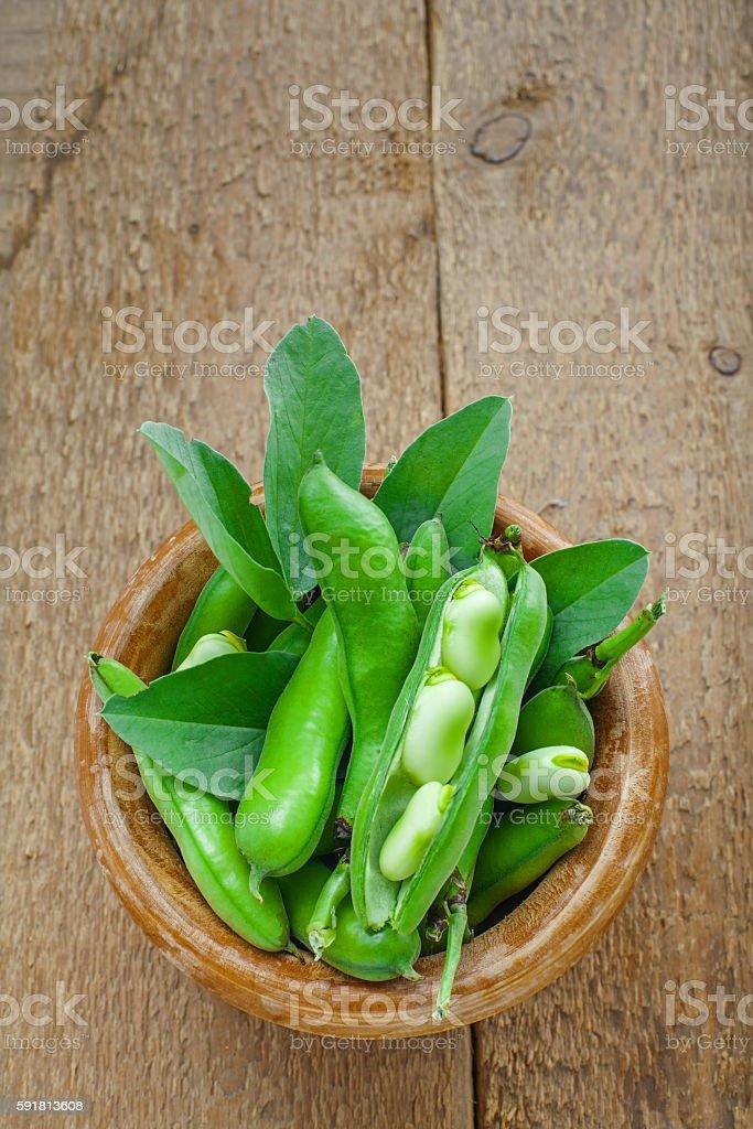Fresh podded broad beans stock photo