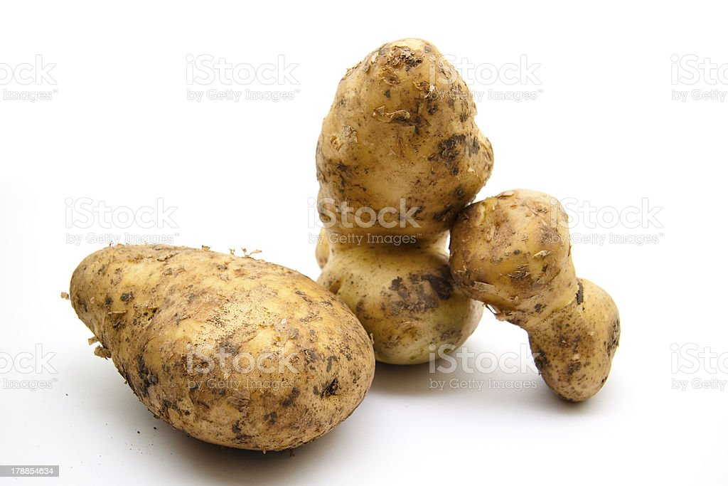 Fresh potato stock photo