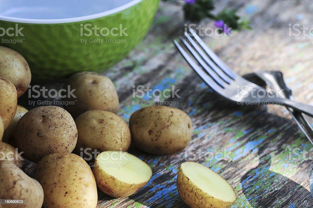 Fresh Potato with purple flower royalty-free stock photo
