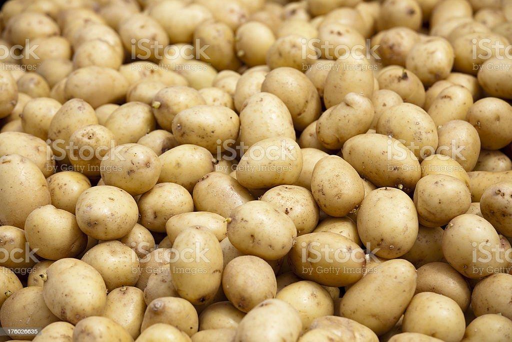 Fresh Potatoes at an Outdoor Farmers Market stock photo