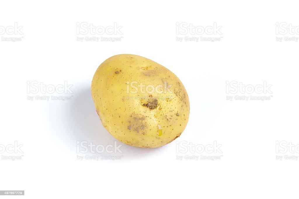 Fresh potatoes. Isolated on a white stock photo