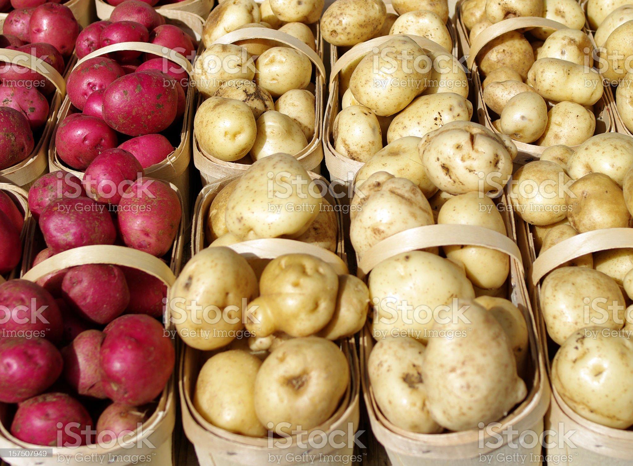 Fresh Potatoes royalty-free stock photo