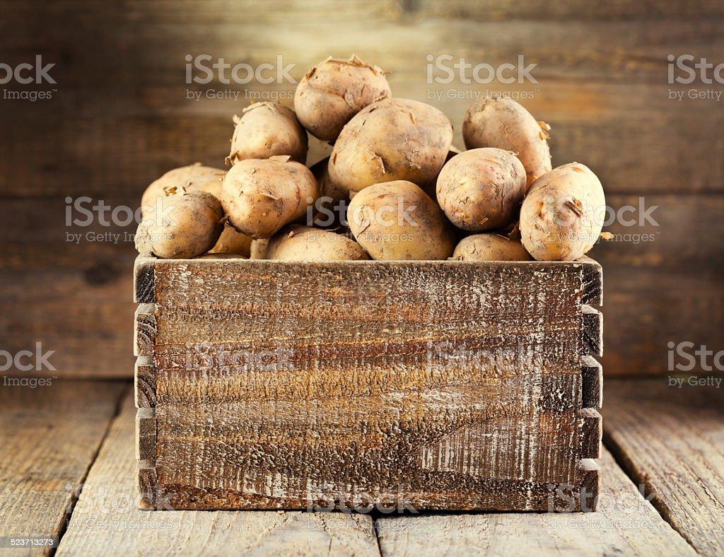 fresh potatoes stock photo