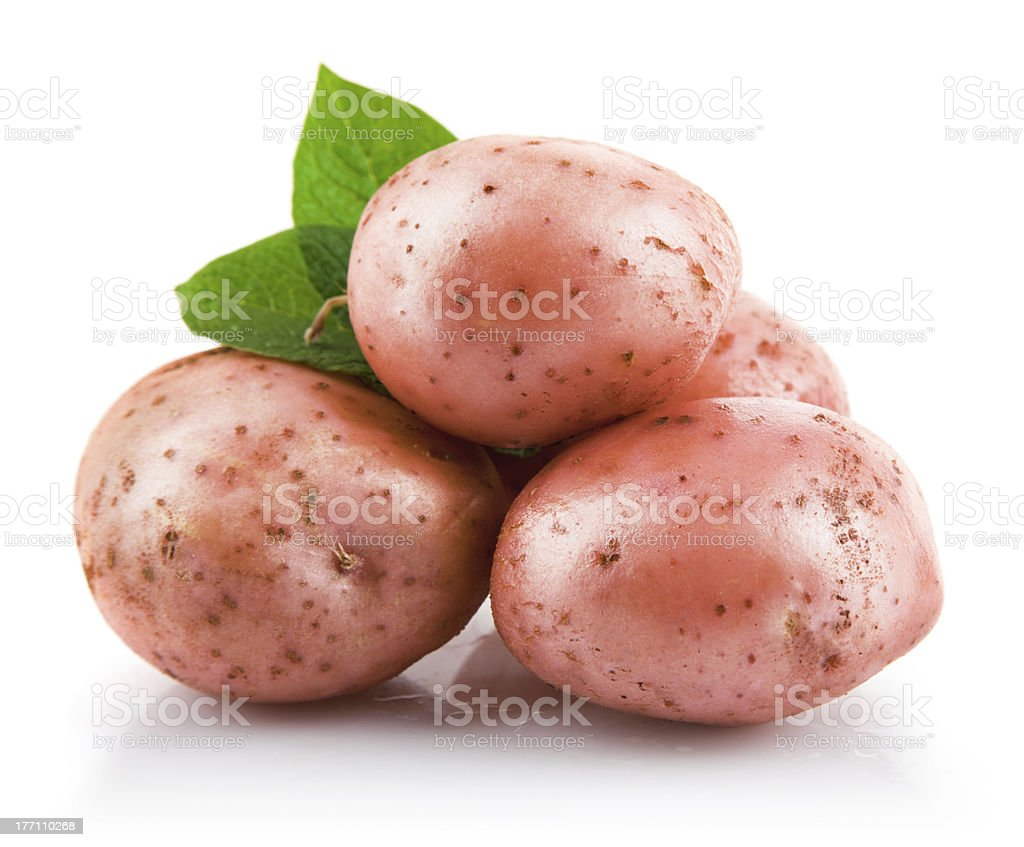 fresh potatoes with green leaf royalty-free stock photo