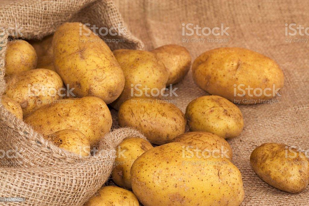 Fresh Potatos royalty-free stock photo
