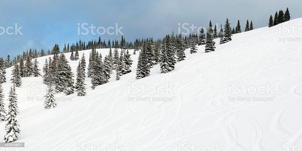 fresh powder ski tracks stock photo