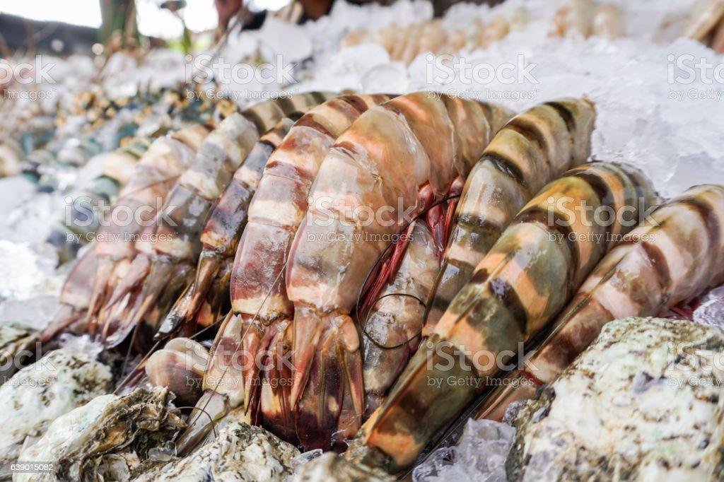 Fresh prawn at the fish market stock photo
