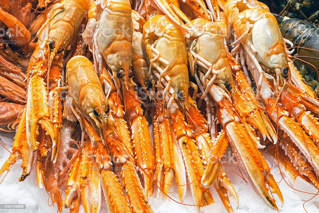Fresh prawns for sale at a market stock photo