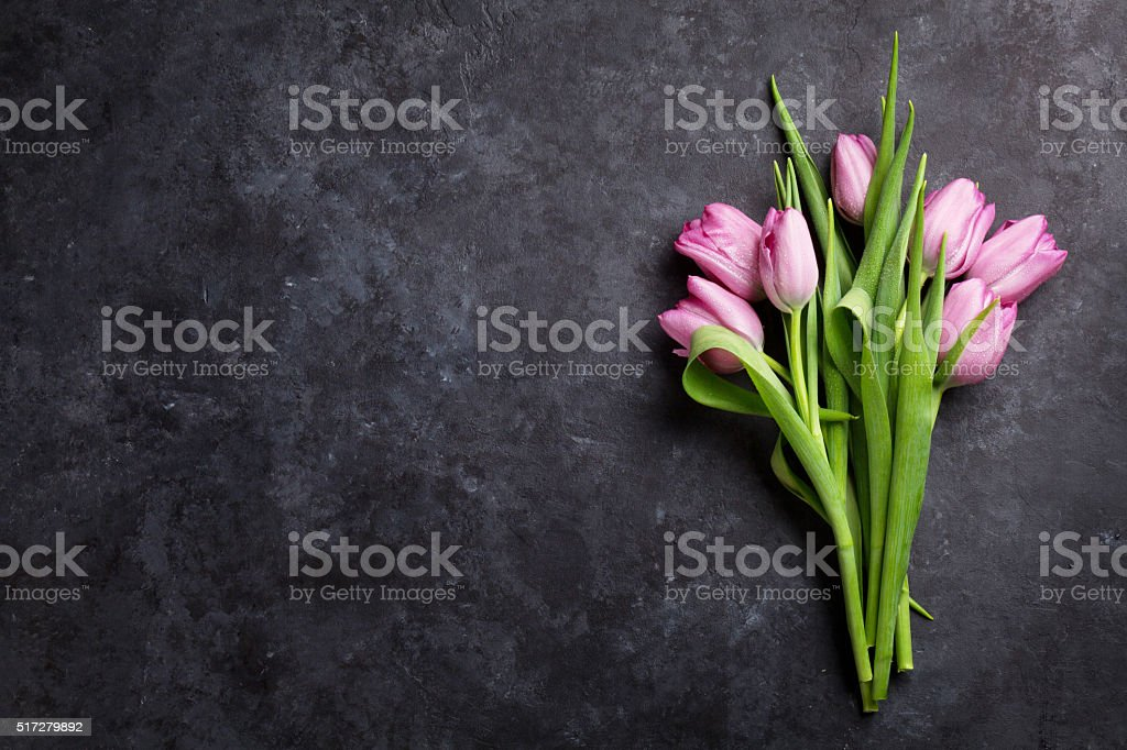 Fresh purple tulip flowers stock photo