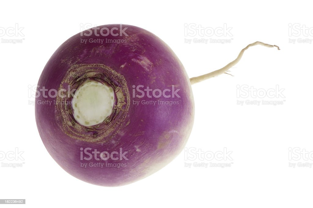 Fresh purple turnip on a white background royalty-free stock photo