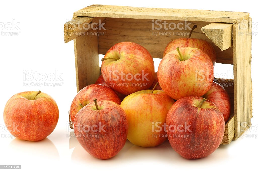 "fresh ""royal gala"" apples in a wooden crate royalty-free stock photo"