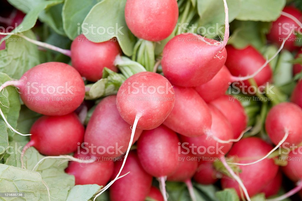 fresh radish and leaves royalty-free stock photo