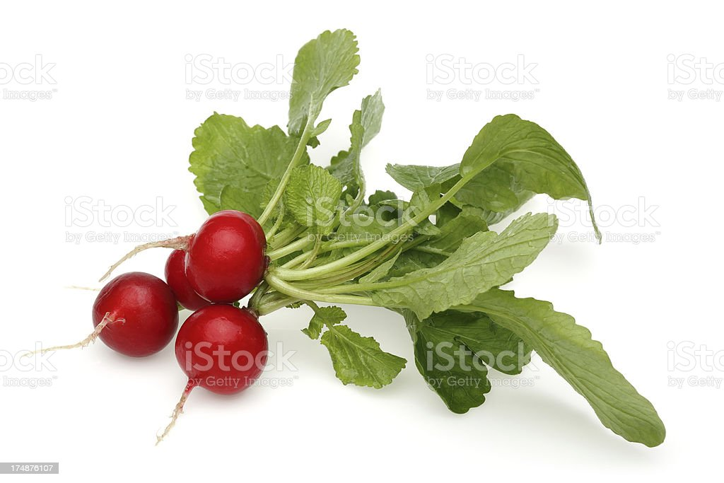Fresh radish royalty-free stock photo
