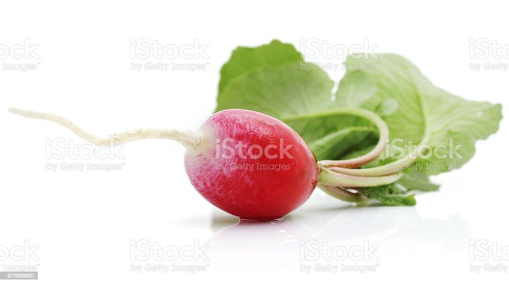fresh radish with green leaf royalty-free stock photo