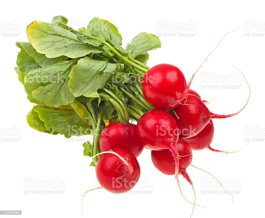 Fresh radishes isolated on white royalty-free stock photo