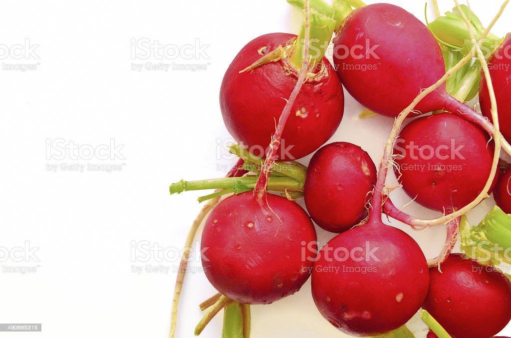 Fresh radishes isolated on white royalty-free stock photo