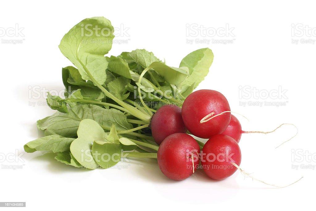 Fresh radishes royalty-free stock photo
