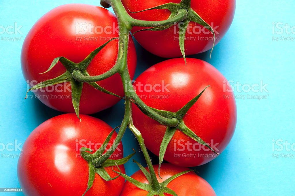 Fresh radishes with leaves on a blue background from above stock photo