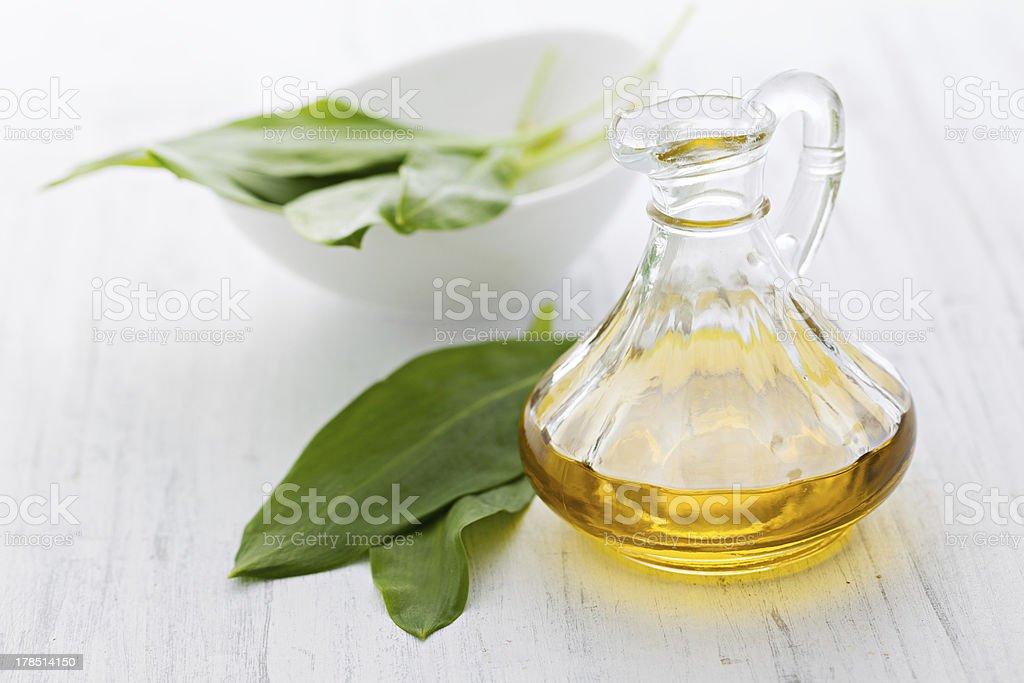 fresh ramsons oil stock photo