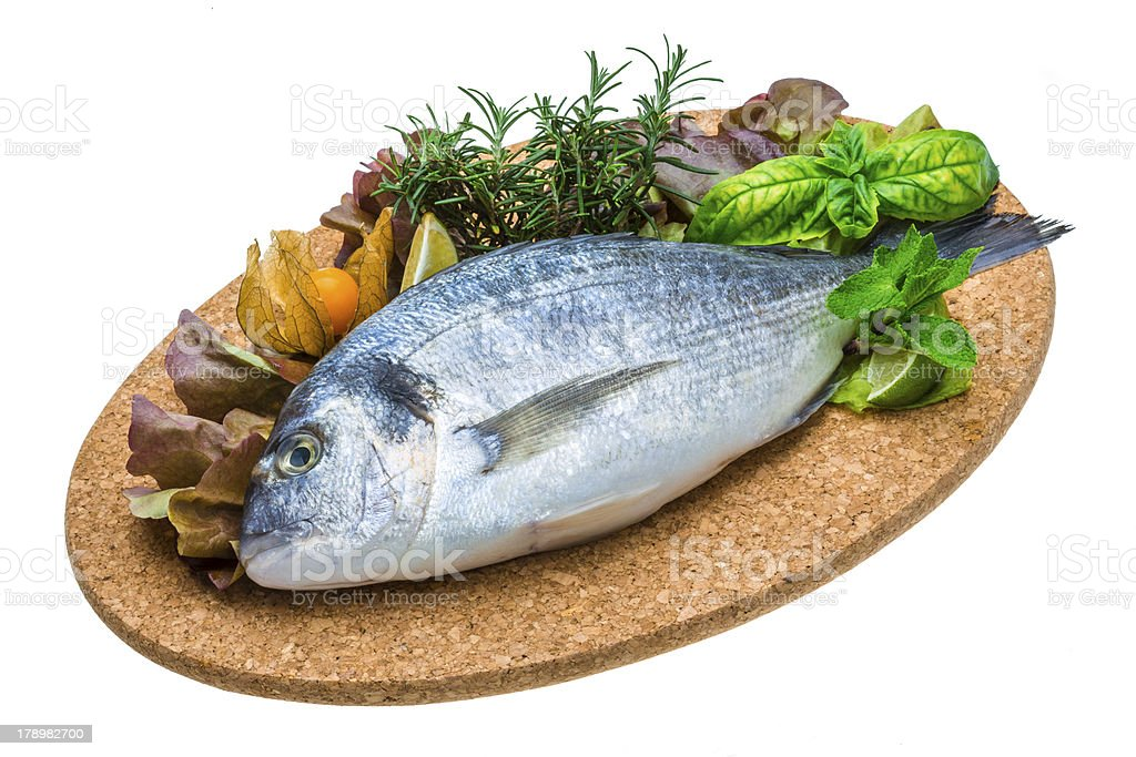 Fresh raw dorada royalty-free stock photo