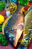 fresh raw fish carp