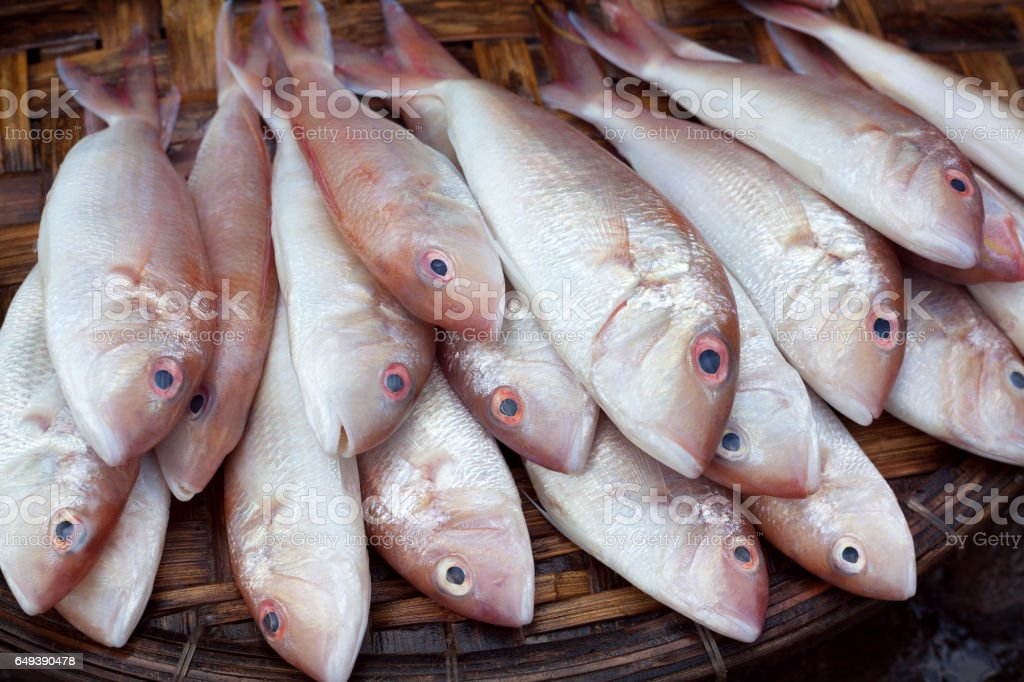 Fresh raw fish in market. Seafood background. stock photo