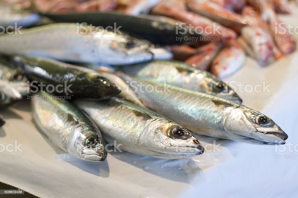 Fresh Raw Mediterranean Anchovies at Market (Close-Up) stock photo