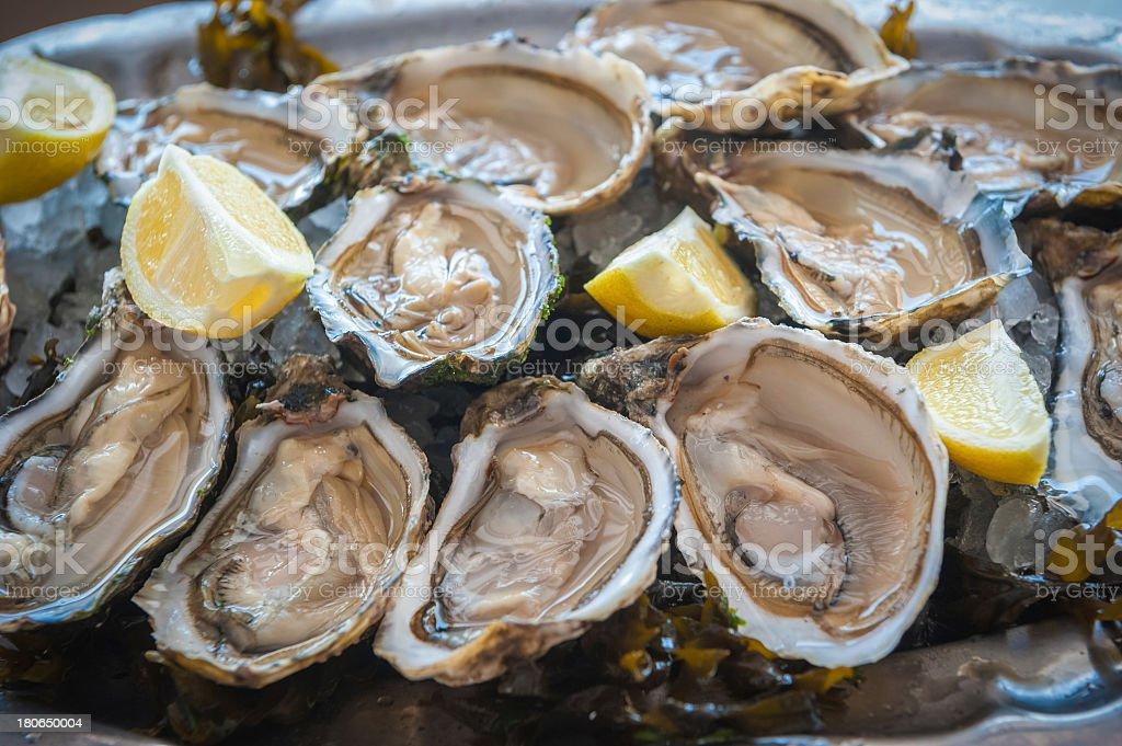 Fresh raw oysters on the half shell with lemon wedges  stock photo