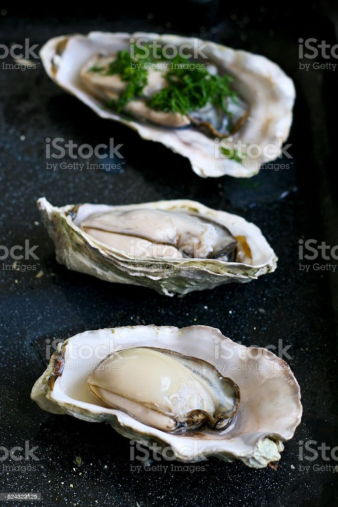 Fresh raw oysters, shucked and ready to eat stock photo