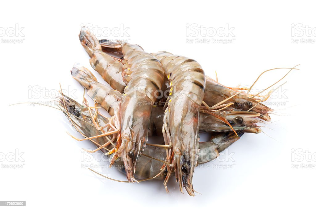 Fresh raw tiger prawns stock photo
