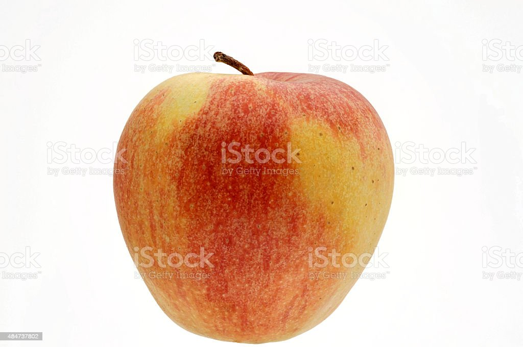 fresh red and yellow apple Elstar stock photo
