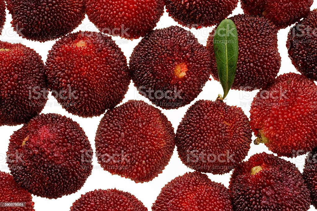 Fresh red arbutus fruits isolated white stock photo