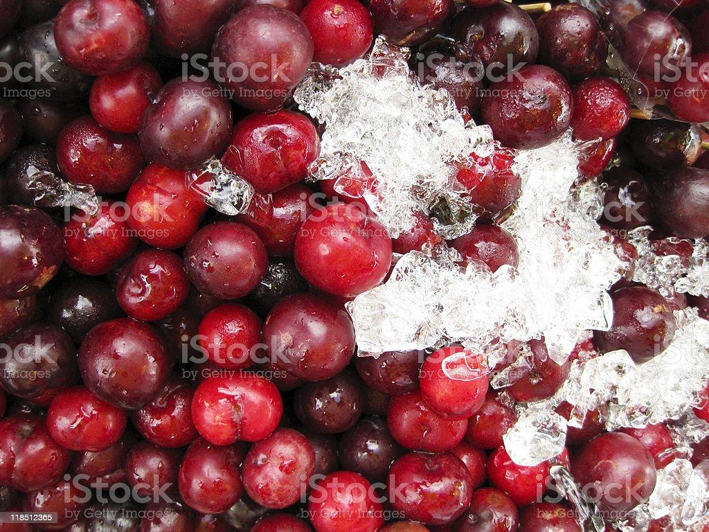 fresh red cherries on ice royalty-free stock photo