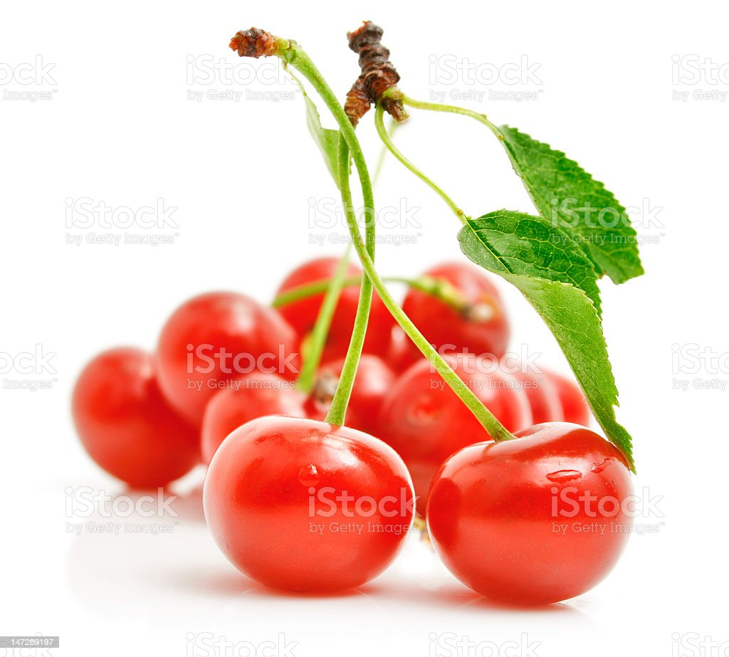 fresh red cherries with green leaves royalty-free stock photo