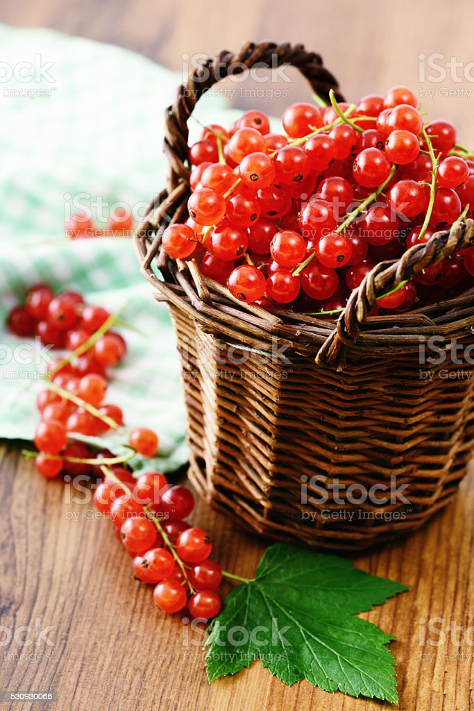 fresh red currant berries in a basket. stock photo