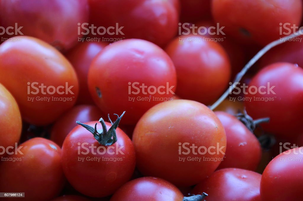 fresh red delicious tomatoes stock photo
