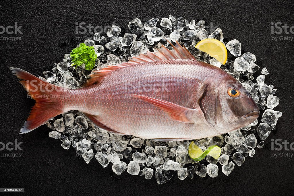 Fresh red porgy fish on ice on a black table stock photo