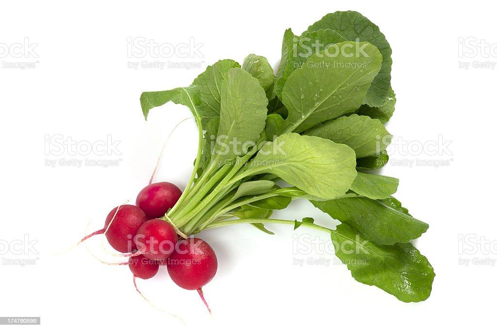 Fresh red radish stock photo