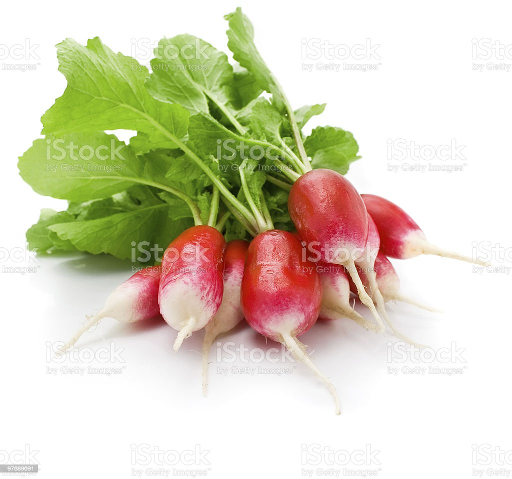 fresh red radish vegetables with green leaves isolated stock photo