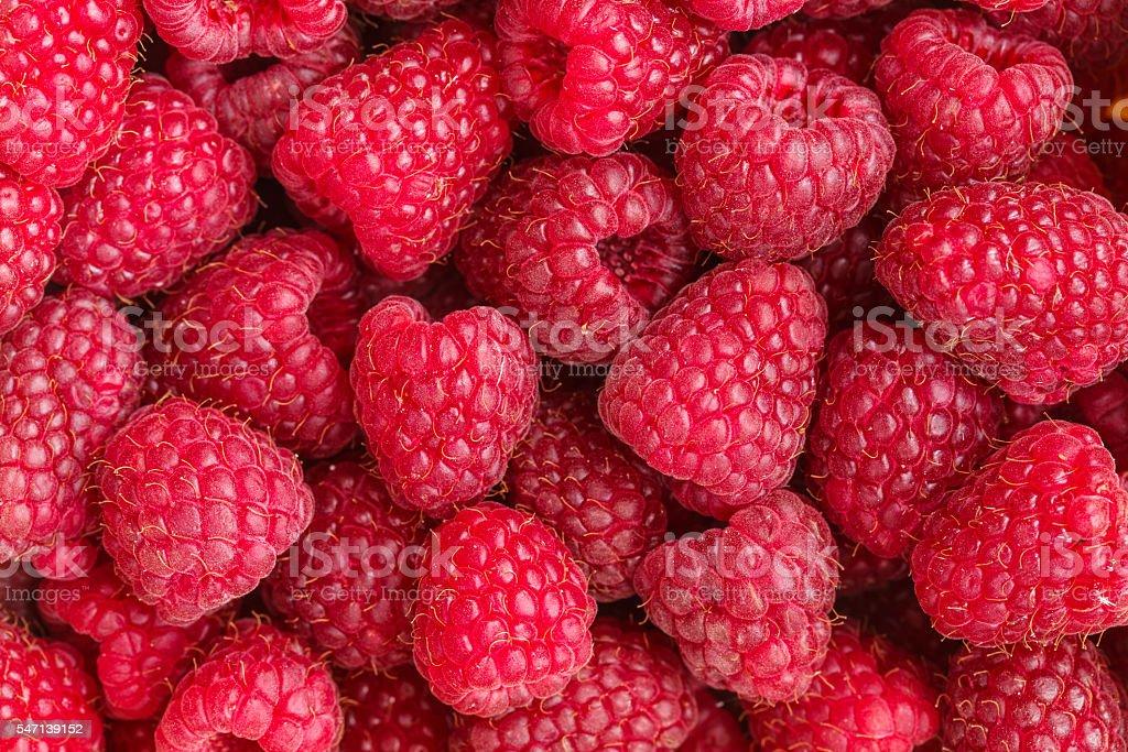 Fresh red raspberries stock photo